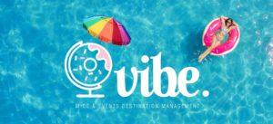 vibe summer logo