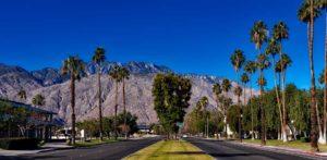 palm spring street