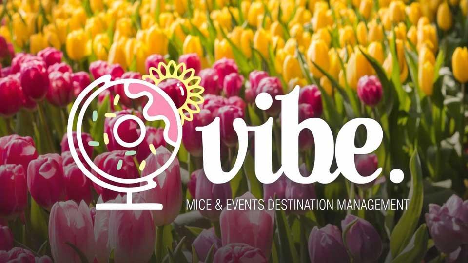 vibe agency sping logo