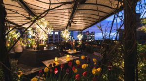 Gallow Green rooftop NYC